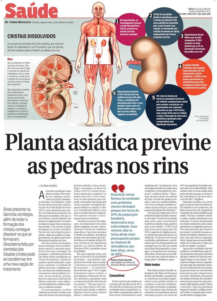 Descoberta dos cientistas sobre os benefícios de planta asiática na prevenção das pedras nos rins.